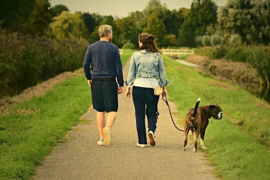 Man and Woman Walking Dog - Exercise Before an MRI
