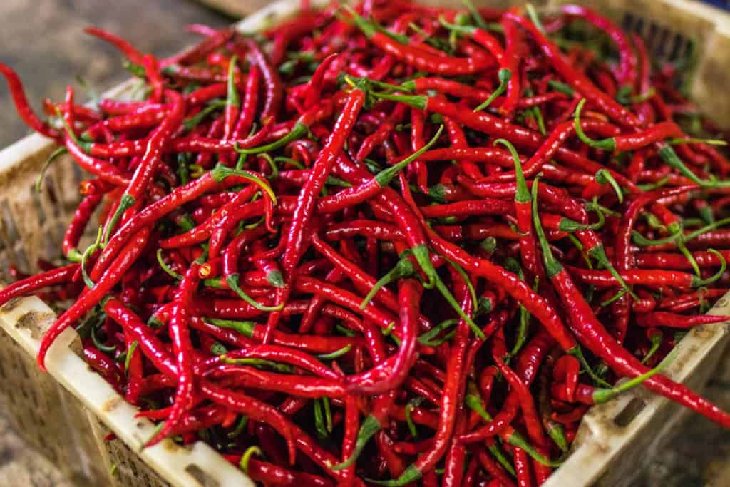 Chillis - Diet plan for a 50 year old woman