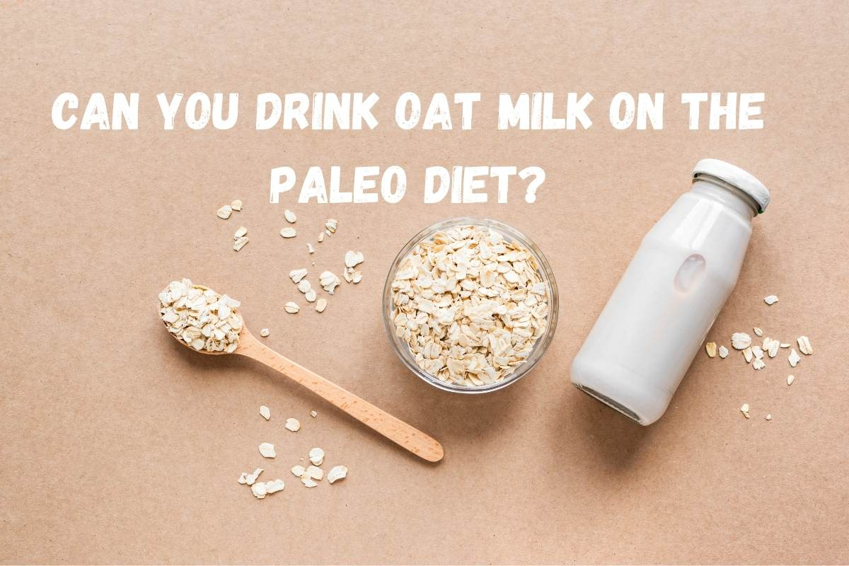 Is Oat Milk Paleo? Are You Able To Drink Oat Milk