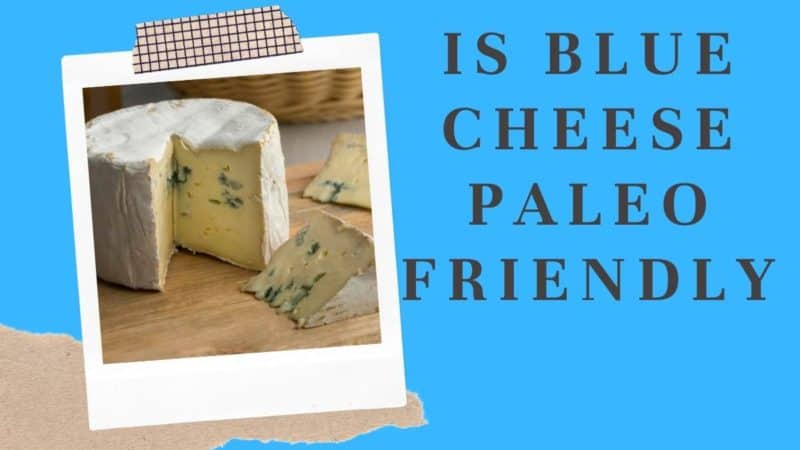 Is Blue Cheese Paleo Friendly?